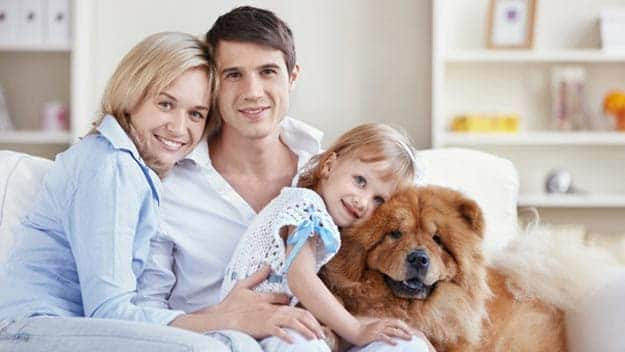 Wills & Trusts dog-young-family Direct Wills Wimbledon